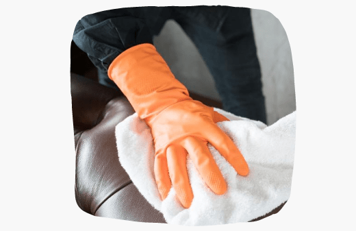Professional Upholstery Cleaning Elwood